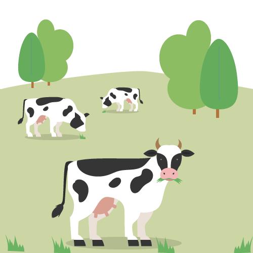 Koeien in weide - melk